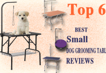 Best small dog grooming table