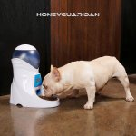 best automatic dog feeder 7