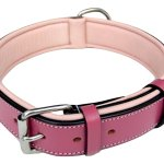Best Leather Dog Collars Reviews 2