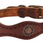 Best Leather Dog Collars Reviews 3