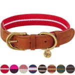 Best Leather Dog Collars Reviews 6