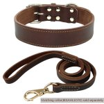 Best Leather Dog Collars Reviews 7