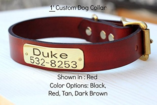 Best Leather Dog Collars Reviews 9
