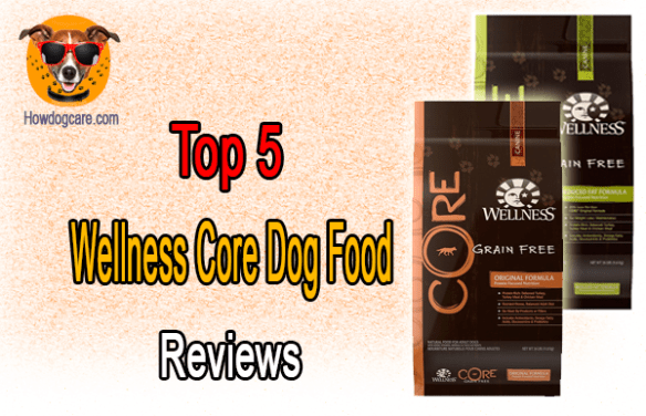 Top 5 Wellness Core Dog Food Reviews Best Top Care With Dogs