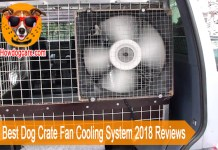 Top 6 Best Dog Crate Fan Cooling System 2018 Reviews