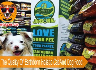 Assess The Quality Of Earthborn Holistic Cat And Dog Food