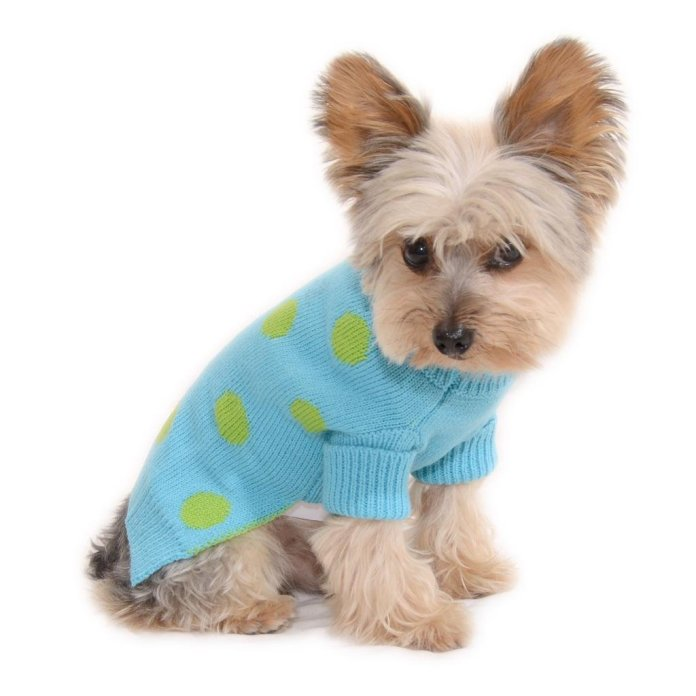 Cheap Clothes For Dogs By Stinky G Aqua Blue