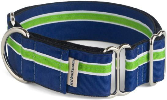 "1.5"" Martingale Collar for Dogs From If It Barks"