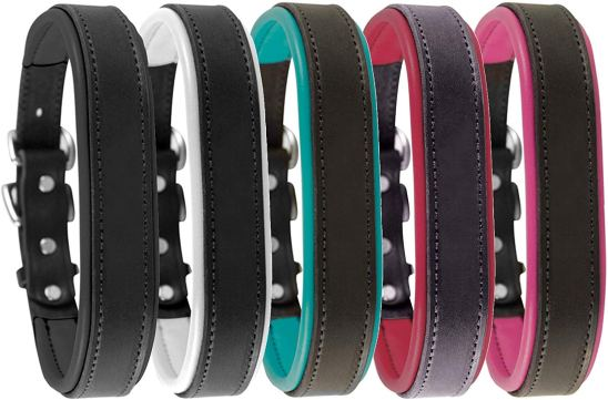 Perri's Padded Leather Dog Collars