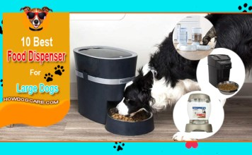 Top 10 Best Large Dog Food Dispenser Reviews