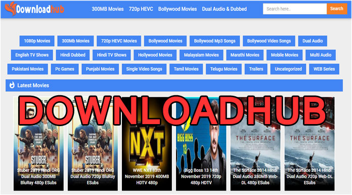 DownloadHub Download Bollywood, Hollywood Dubbed 300MB Movies in HD