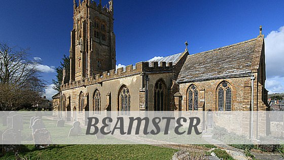 How To Say Beamster