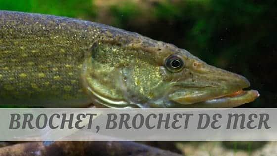 How To Say Brochet