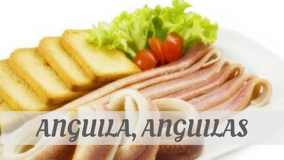 How To Say Anguila