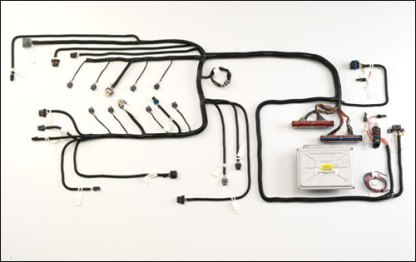 #HVL81D - GEN III VORTEC HARNESS: 2002-07 8.1L  w/o Electronic Transmission, Drive By Wire