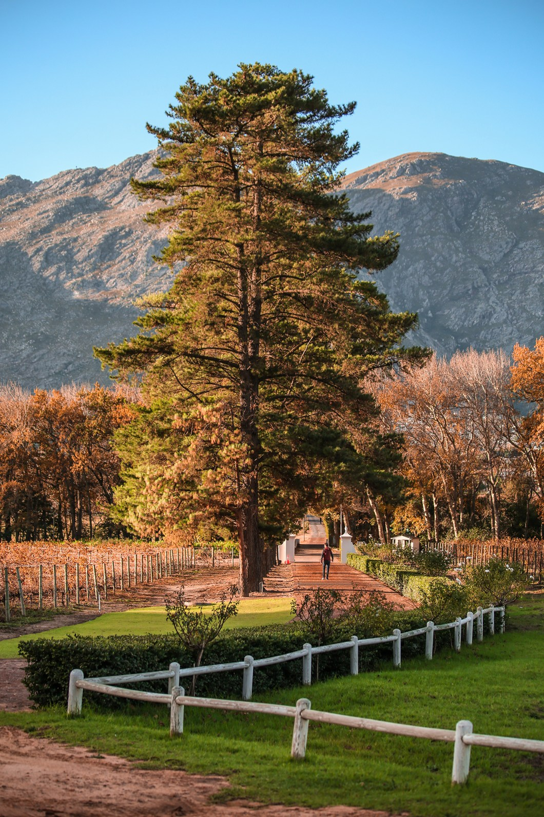 Franschhoek South Africa | How Far From Home