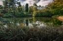 The Japanese Garden, Tatton Park, England