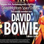 DAVID BOWIE TRIBUTE SHOW – Member