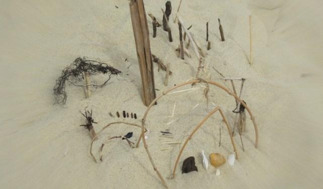 Beach Art jardin japonais