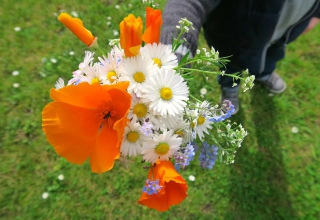 bouquet-champêtre-jouer-nature-enfant