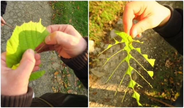 jouer-avec-la-nature-feuilles-araignées