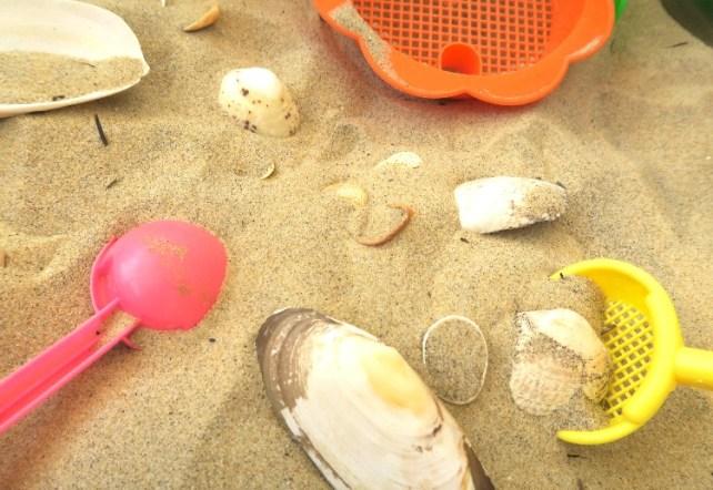 plateau sensoriel Montessori été plage sable coquillages