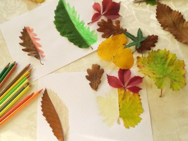 Activité dessin feuille arbre automne à compléter