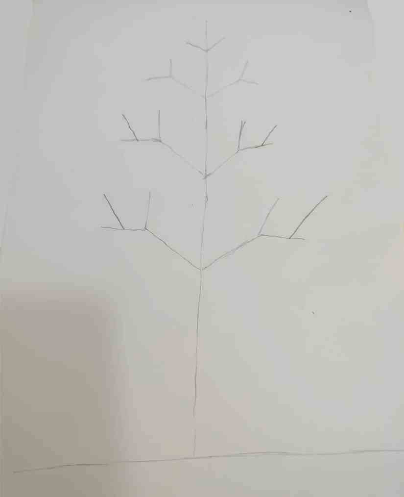 Draw a Tree 2020072705 - How to Draw a Tree: Step by Step Practice for Beginners