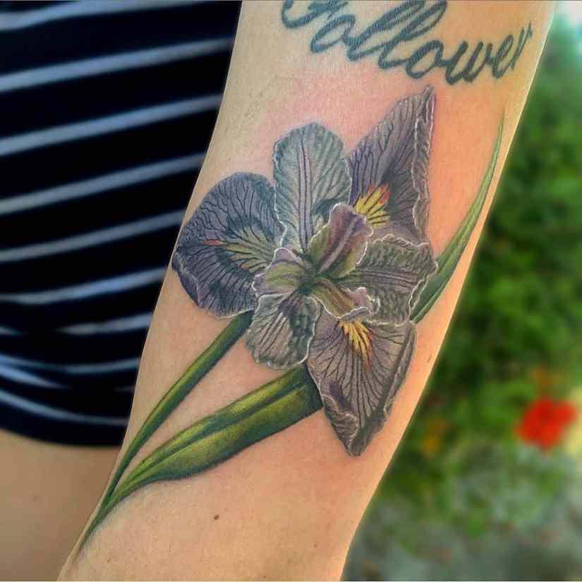 Iris Tattoo 2020082710 - 10 Best Iris Tattoo Designs and Meanings