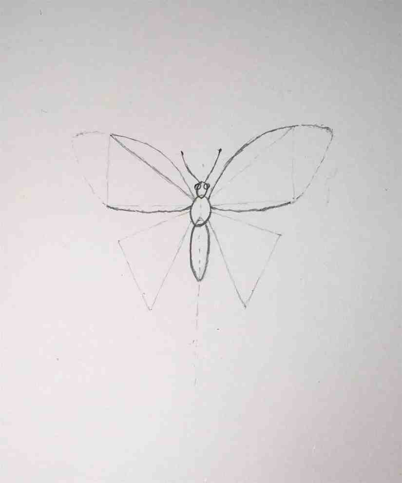 Draw a Butterfly 2020092304 - How to Draw a Butterfly-Step by Step Tutorial