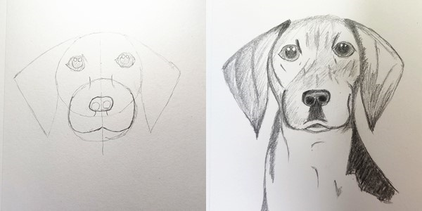 Draw-a-Dog-20201224