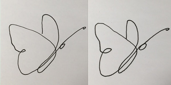 one line drawing butterfly-20210130