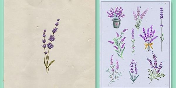 Lavender-Tattoos-20210603