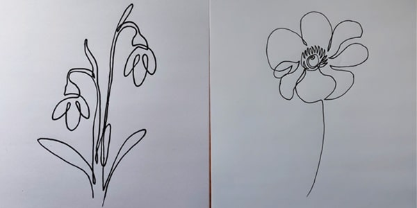One line drawing Anemone -202106
