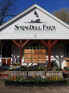 may-food-farms-springdell