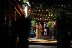 Save money and create a garden oasis at your wedding by renting plants | Pizzuti Photography