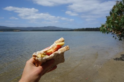 My lunch of peanut butter, cheese, squash and tomato sandwich