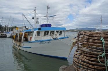 Triabunna fishing boats