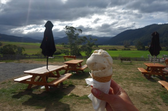 "Wattleseed ""real"" ice-cream"