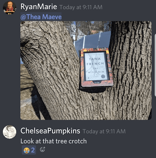 """This photo shows a screenshot of the Wych Elm chat in the HOWL Society Discord. User @RyanMarie posted an image of her copy of The Wych Elm in a tree, placed in a spot where two thick branches form a V shape. User @ChelseaPumpkins replies to her photo, saying """"Look at that tree crotch!"""" Other users respond with laughing with tears emojis."""