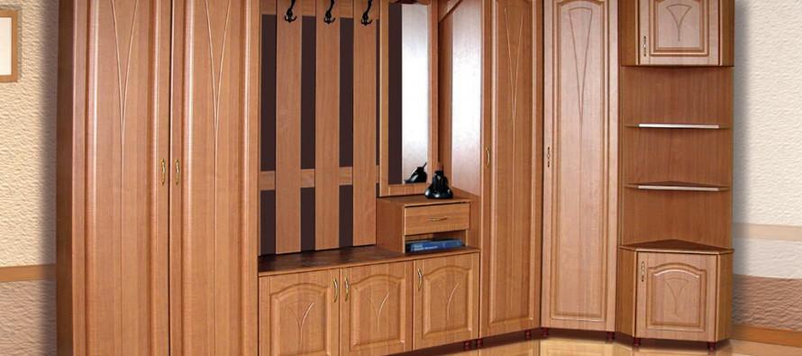 шкаф в маленькую прихожую фото дизайн идеи 6