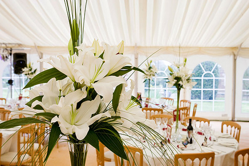 How Much Does Wedding Draping Cost?