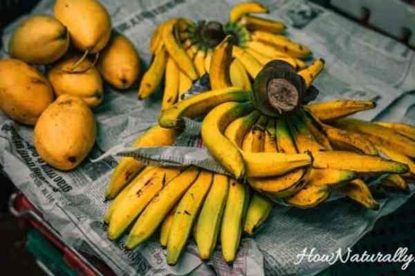 Homemade banana fertilizer   DIY the easiest recipe