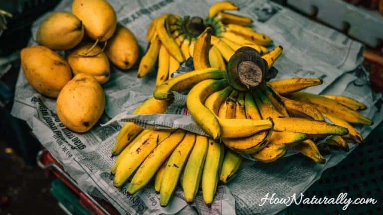 Homemade banana fertilizer | DIY the easiest recipe
