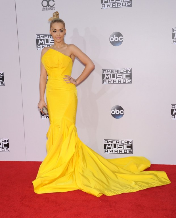 Rita Ora outfits at American Music Awards 2015
