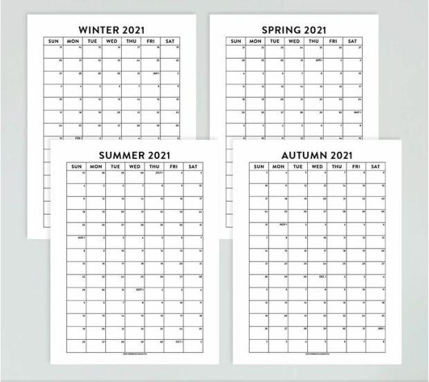 Essential Calendar School Activity