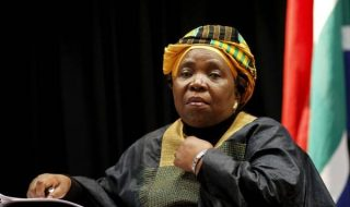 Ambitious Dlamini-Zuma breaks cover, goes digital