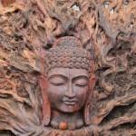 buddha_11x14
