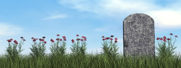 Tombstone and beautiful flowers by day - 3D render