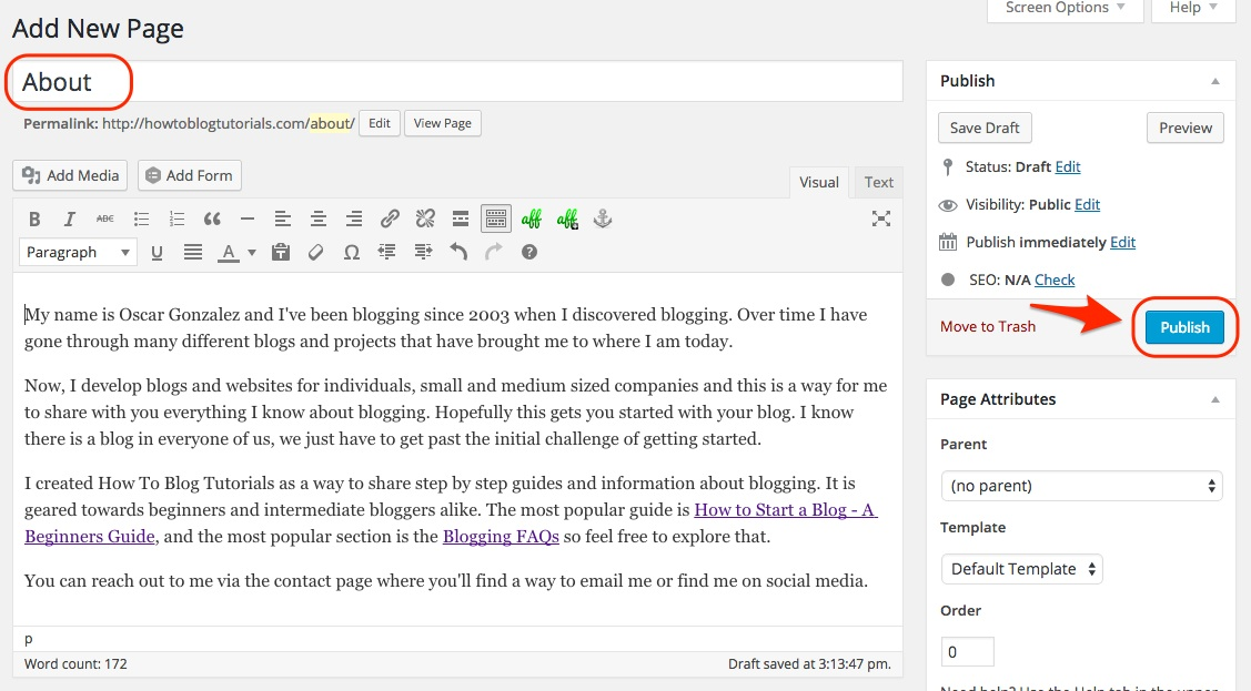 Screenshot showing the edit new page window in WordPress
